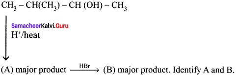 Samacheer Kalvi 11th Chemistry Solutions Chapter 13 Hydrocarbons - 257