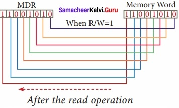 Samacheer Kalvi Computer Application 11th Solutions Chapter 3 Computer Organisation