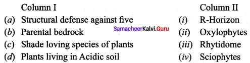 Principle Of Ecology Pdf Samacheer Kalvi 12th Bio Botany Solutions Chapter 6