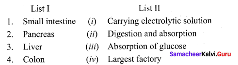 Tamil Nadu 11th Biology Model Question Paper 4 English Medium - 3