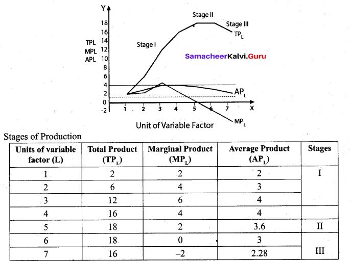 Tamil Nadu 11th Economics Model Question Paper 3 English Medium - 14