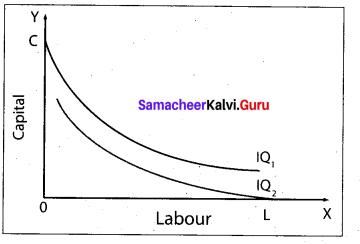 Tamil Nadu 11th Economics Model Question Paper 5 English Medium - 11