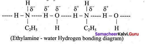 Tamil Nadu 12th Chemistry Model Question Paper 1 English Medium - 11