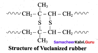 Tamil Nadu 12th Chemistry Model Question Paper 1 English Medium - 33