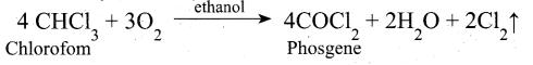 Tamil Nadu 12th Chemistry Model Question Paper 5 English Medium - 15