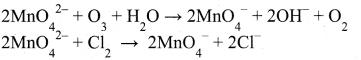 Tamil Nadu 12th Chemistry Model Question Paper 5 English Medium - 31