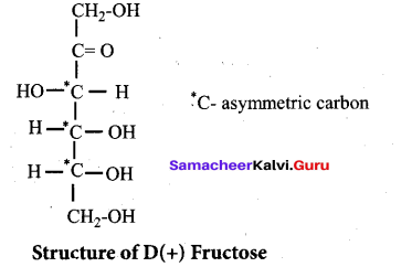 Tamil Nadu 12th Chemistry Model Question Paper 5 English Medium - 49
