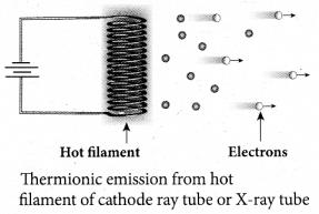 Tamil Nadu 12th Physics Model Question Paper 3 English Medium - 23