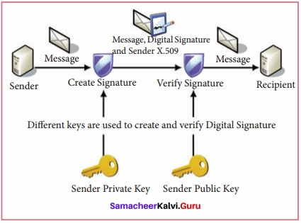 Samacheer Kalvi 11th Computer Applications Solutions Chapter 17 Computer Ethics and Cyber Security Q3
