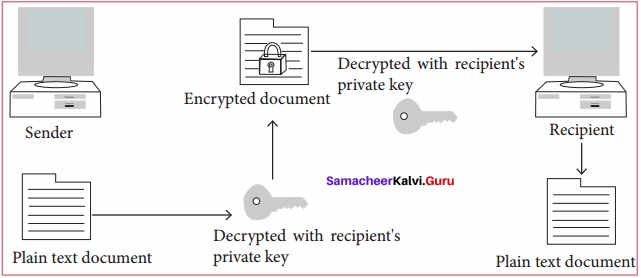 Samacheer Kalvi 11th Computer Applications Solutions Chapter 17 Computer Ethics and Cyber Security Q4.1