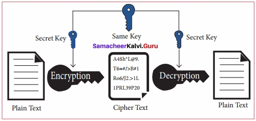 Samacheer Kalvi 11th Computer Applications Solutions Chapter 17 Computer Ethics and Cyber Security Q4