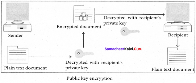 Samacheer Kalvi 11th Computer Science Solutions Chapter 17 Computer Ethics and Cyber Security