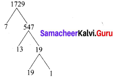 Samacheer Kalvi 10th Maths Chapter 2 Numbers and Sequences Ex 2.10 1