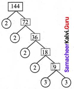 Samacheer Kalvi 6th Maths Solutions Term 2 Chapter 1 Numbers Ex 1.1 Q11.4