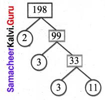 Samacheer Kalvi 6th Maths Solutions Term 2 Chapter 1 Numbers Ex 1.1 Q11.6