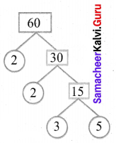 Samacheer Kalvi 6th Maths Solutions Term 2 Chapter 1 Numbers Ex 1.1 Q11