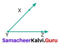 Samacheer Kalvi 6th Maths Term 1 Chapter 4 Geometry Ex 4.2 Q11