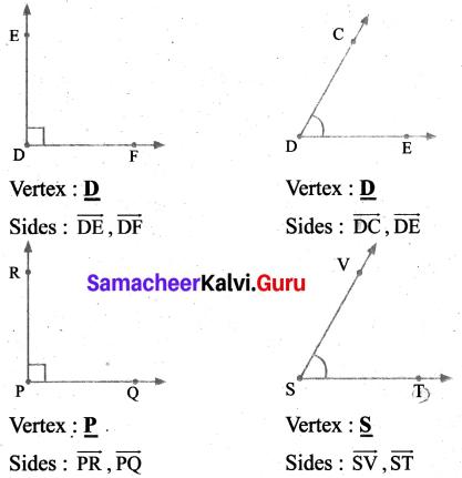 Samacheer Kalvi 6th Maths Term 1 Chapter 4 Geometry Ex 4.2 Q2.1