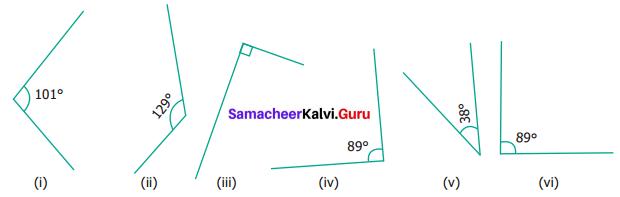 Samacheer Kalvi 6th Maths Term 1 Chapter 4 Geometry Ex 4.2 Q5