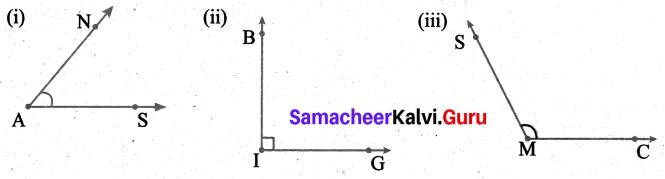 Samacheer Kalvi 6th Maths Term 1 Chapter 4 Geometry Ex 4.2 Q8