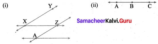 Samacheer Kalvi 6th Maths Term 1 Chapter 4 Geometry Ex 4.3 Q3
