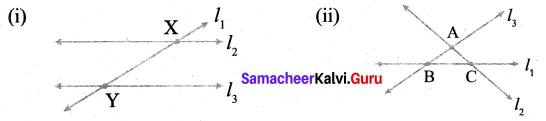 Samacheer Kalvi 6th Maths Term 1 Chapter 4 Geometry Ex 4.3 Q5