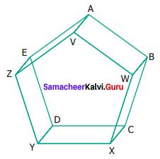 Samacheer Kalvi 6th Maths Term 1 Chapter 4 Geometry Ex 4.4 Q2
