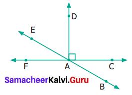 Samacheer Kalvi 6th Maths Term 1 Chapter 4 Geometry Ex 4.4 Q8