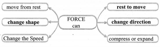 Samacheer Kalvi 6th Science Solutions Term 1 Chapter 2 Force and Motion 12
