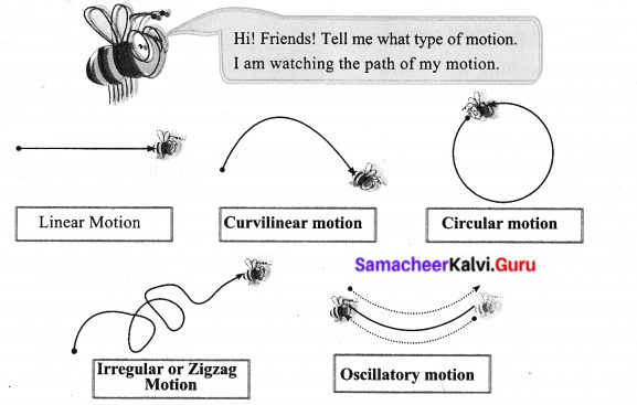 Samacheer Kalvi 6th Science Solutions Term 1 Chapter 2 Force and Motion 16