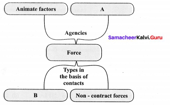 Samacheer Kalvi 6th Science Solutions Term 1 Chapter 2 Force and Motion 23