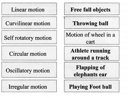 Samacheer Kalvi Guru 6th Science Guide Solutions Term 1 Chapter 2 Force And Motion