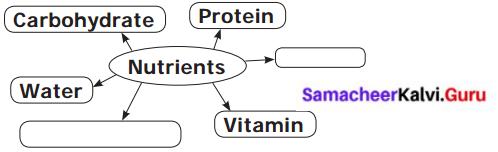 Samacheer Kalvi 6th Science Solutions Term 1 Chapter 6 Health and Hygiene 1