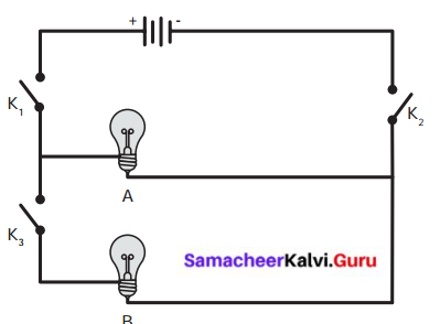 Samacheer Kalvi 6th Science Book Answers Term 2 Chapter 2 Electricity