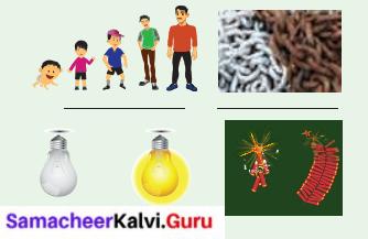 Samacheer Kalvi 6th Science Term 2 Chapter 3 Changes Around Us