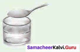 Samacheer Kalvi Guru 6th Science Term 2 Chapter 3 Changes Around Us