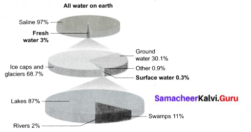 Samacheer Kalvi 6th Science Guide Solutions Term 3 Chapter 2 Water