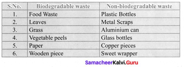 Samacheer Kalvi 6th Science Solutions Term 3 Chapter 4 Our Environment 7