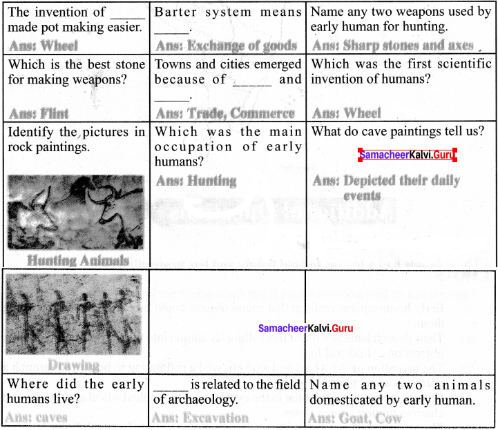 Samacheer Kalvi Guru 6th Social Science History Solutions Term 1 Chapter 2 Human Evolution