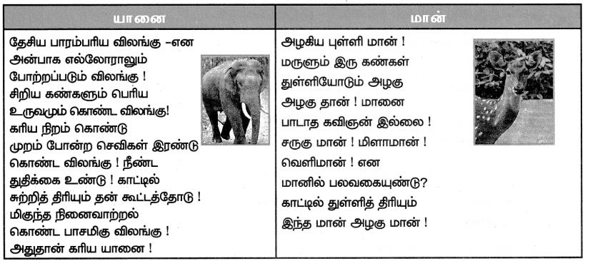 Samacheer Kalvi 7th Tamil Solutions Term 1 Chapter 2.3 விலங்குகள் உலகம் - 2