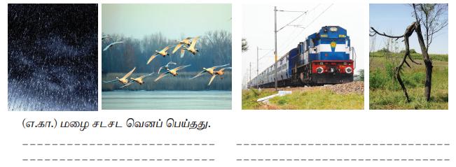 Samacheer Kalvi 7th Tamil Solutions Term 3 Chapter 3.5 ஆகுபெயர் - 12