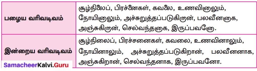 Samacheer Kalvi 8th Tamil Solutions Chapter 1.3 தமிழ் வரிவடிவ வளர்ச்சி 1