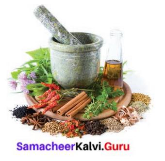 Samacheer Kalvi 8th Tamil Solutions Chapter 3.5 எச்சம் 1