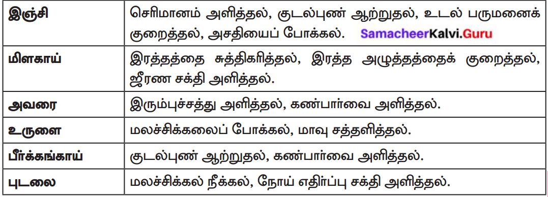 Samacheer Kalvi 8th Tamil Solutions Chapter 3.5 எச்சம் 6