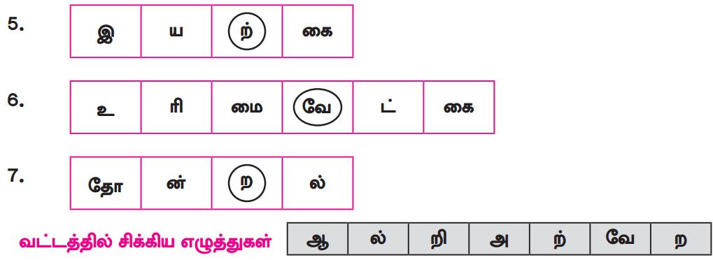 Samacheer Kalvi 8th Tamil Solutions Chapter 4.5 வேற்றுமை 3