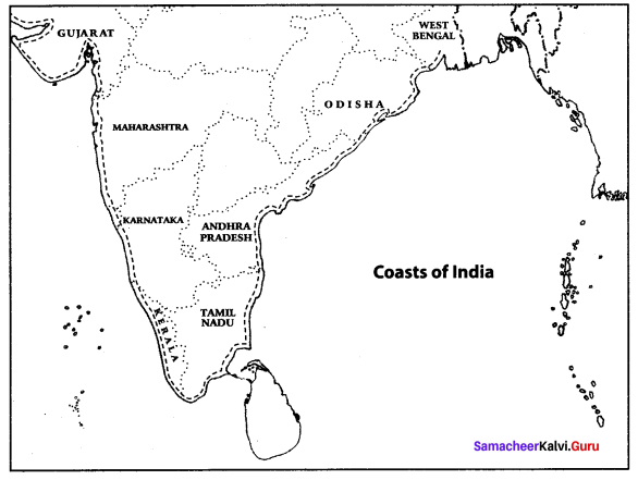 10th Social Geography Unit 1 Samacheer Kalvi India: Location, Relief And Drainage