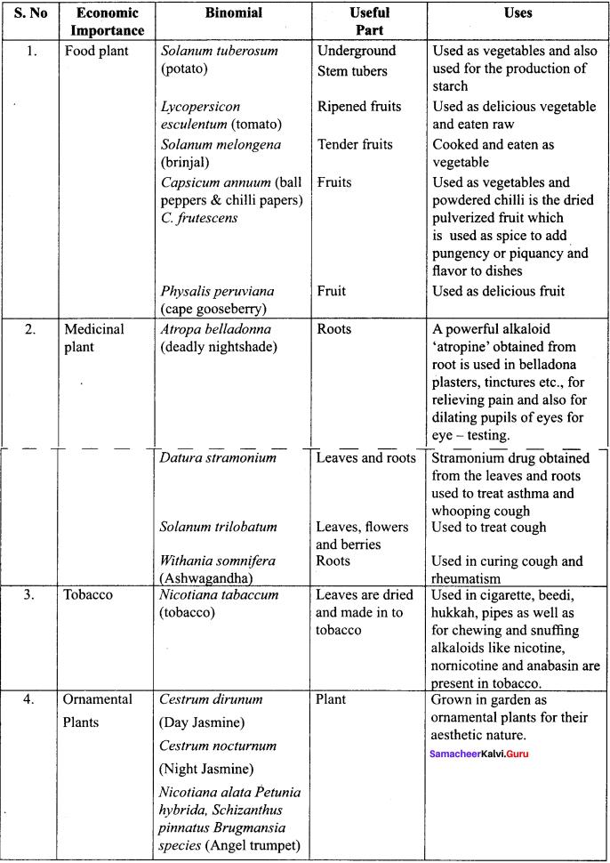 Samacheer Kalvi 11th Bio Botany Solutions Chapter 5 Taxonomy and Systematic Botany 13