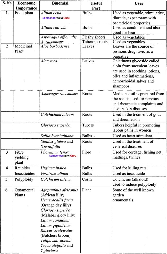Samacheer Kalvi 11th Bio Botany Solutions Chapter 5 Taxonomy and Systematic Botany 15
