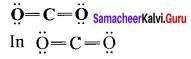 Samacheer Kalvi 11th Chemistry Solutions Chapter 10 Chemical Bonding-100
