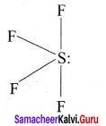 Samacheer Kalvi 11th Chemistry Solutions Chapter 10 Chemical Bonding-119